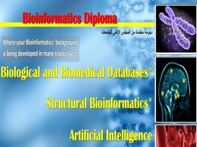 Bioinformatics Diploma